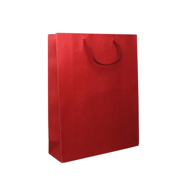 Red Gift Bag - 23x19x9 1