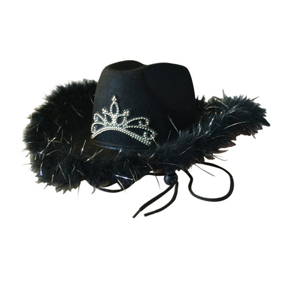 Cowboy Hat With Feather & Tiara 1