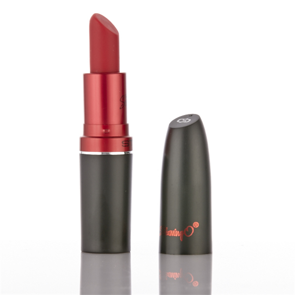 Lipstick Vibrator 1