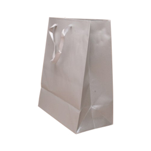 Silver Grey Gift Bag - 23x18x10cm 1