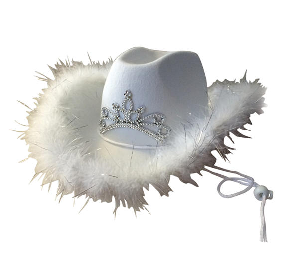 Cowboy Hat With Feather & Tiara 2